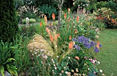KNIPHOFIA AND AGAPANTHUS IN BORDER,  LITTLE GARTH SOMERSET ENGLAND,  RED HOT POKER,  TORCH LILY