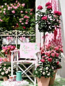 TEATIME SETTING WITH ROSES ON PATIO IN CONTAINERS