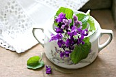 SPRIG OF VIOLETS IN A SUGAR POT