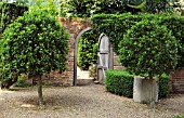 GATEWAY TO COURTYARD WITH HERITAGE APPLE TREES,  WEST GREEN GARDEN,  HAMPSHIRE.