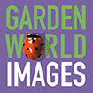 Garden World Images